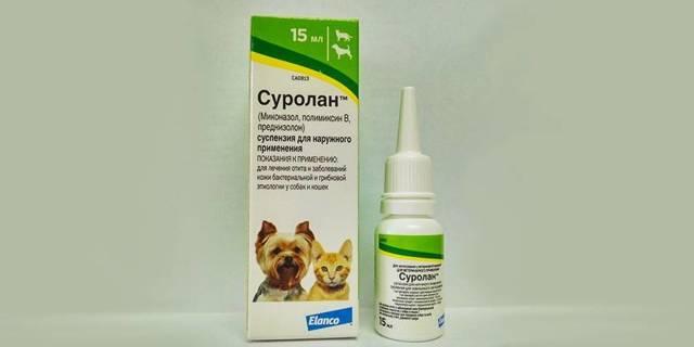 Лекарство для ушей кошек - меры профилактики