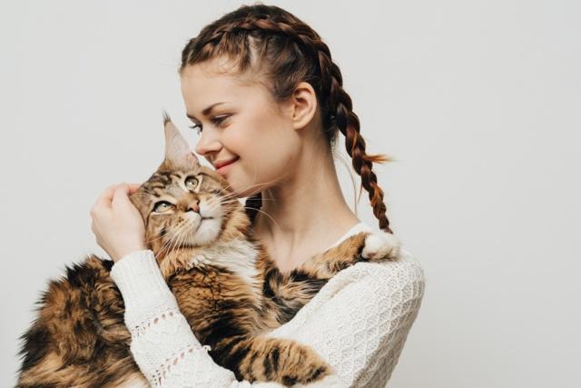 Как сделать массаж кошке - основные правила