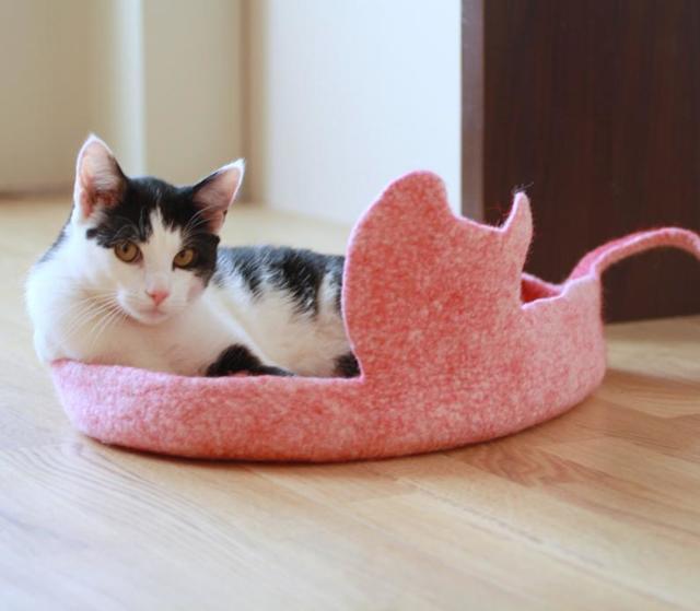 Как избавиться от аллергии на кошек?