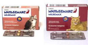 Мильбемакс для кошек - как правильно давать