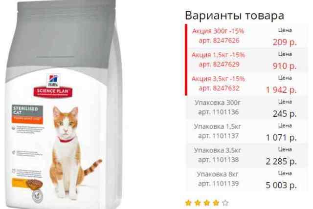 Кошка не пьет после стерилизации - что делать
