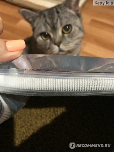 Корм now для кошек - описание и состав