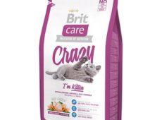 Корм Брит для котят - описание, плюсы и минуси