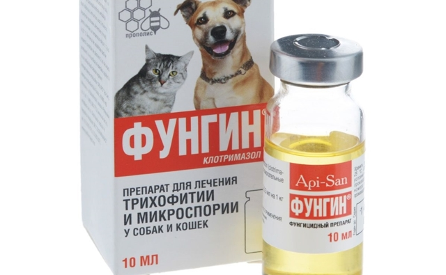 Клотримазол для кошек - инструкция по применению препарата