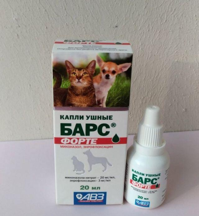 Капли от клещей для кошек - показания и противопоказания к применению