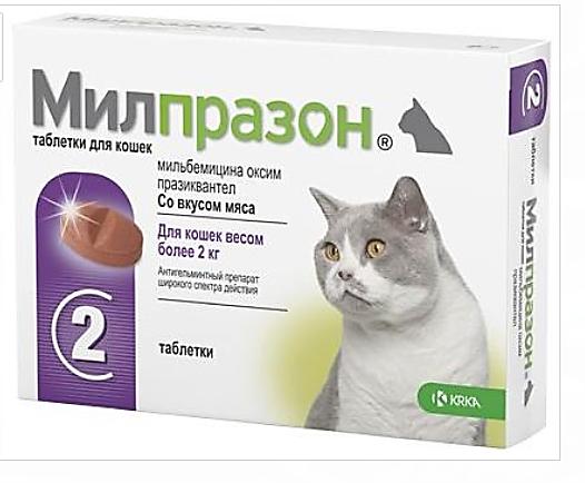 Милпразон для кошек - Инструкция по применению препарата