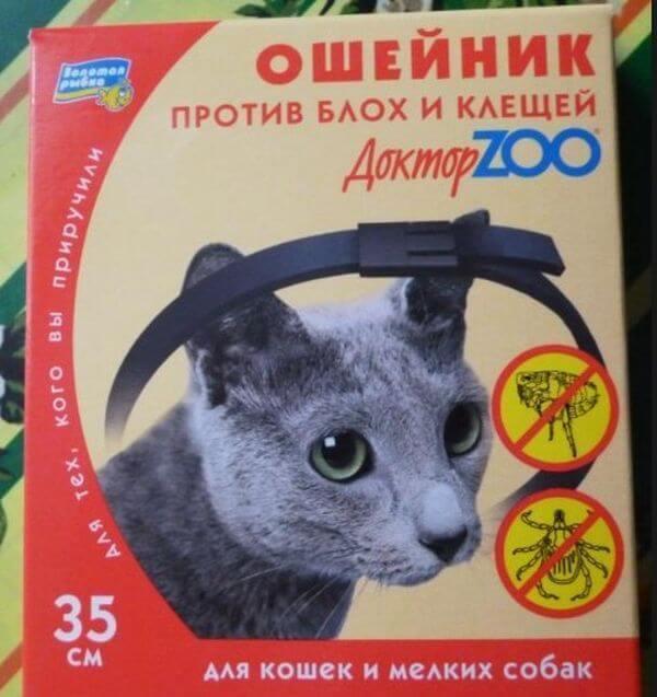 Ошейник от блох для кошек - виды, недостатки, преимущество