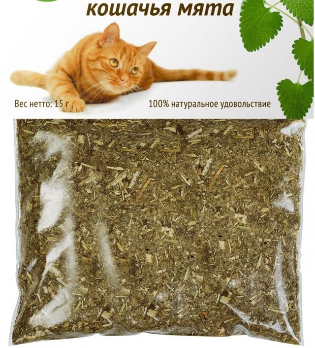 Что будет если дать коту валерьянку - реакция на препарат