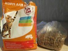 Как правильно кормить кошку сухим кормом - 5 советов от ветеринаров