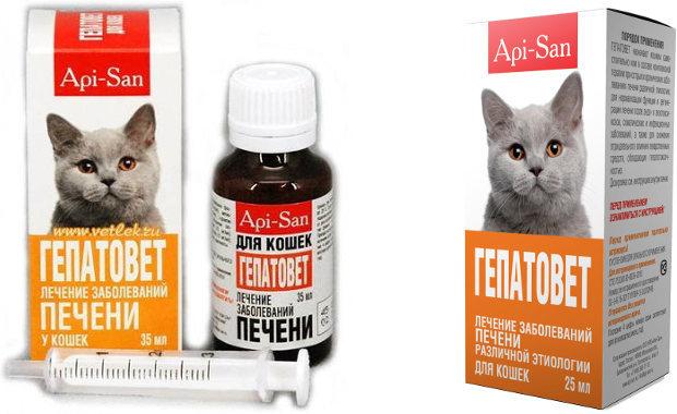 Гепатовет для кошек - инструкция по применению препарата