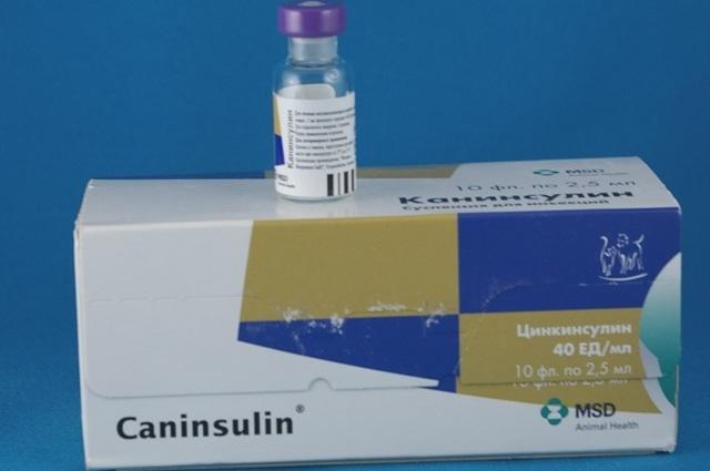 Инсулин для кошек: инструкция по применению