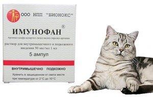 Имунофан для кошек - инструкция по применению, дозировка