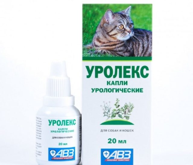 Уро-Урси для кошек - инструкция по применению препарата