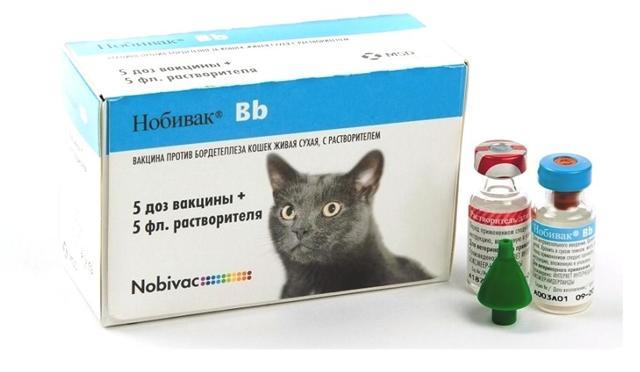Нобивак для кошек - инструкция по применению