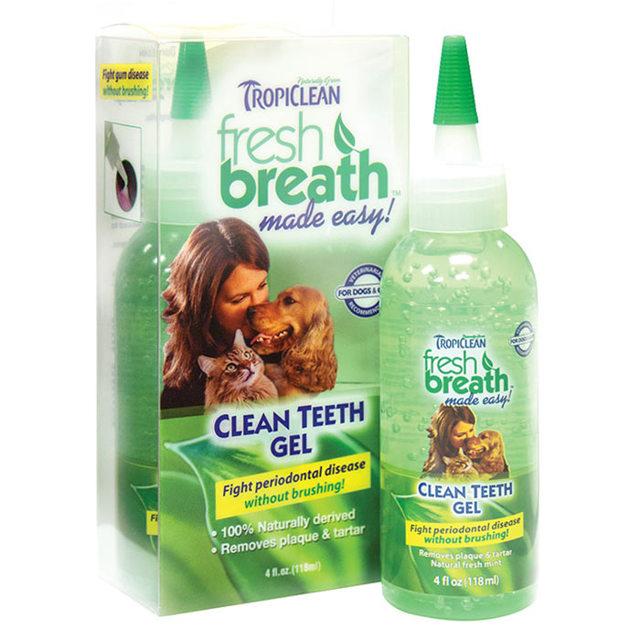 Зубной камень у кошек - симптомы, лечение, профилактика