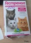 Таблетки Гестренол для кошек - инструкция по применению