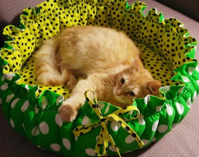 Форвет для кошек - инструкция по применению