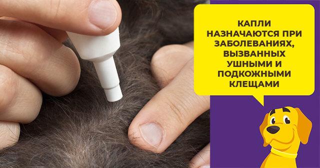 Капли Амит для кошек - инструкция по применению