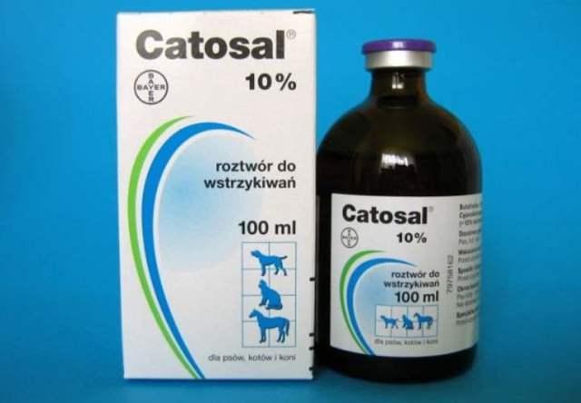 Катозал для кошек - инструкция по применению препарата