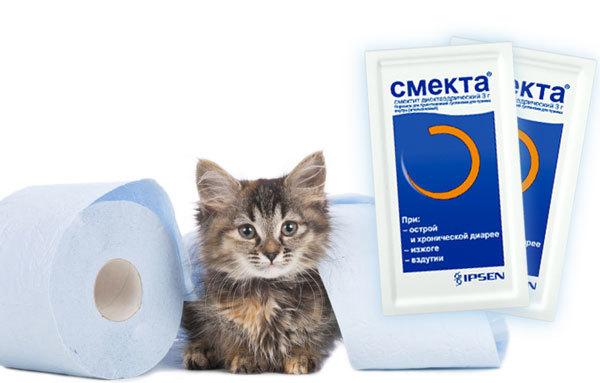 Смекта котенку - как и сколько давать