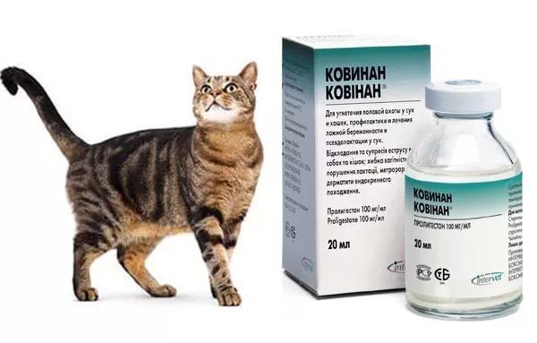 Ковинан для кошек - инструкция по применению