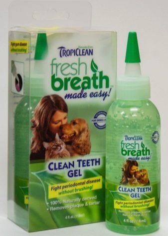Зубная паста для кошек - как выбрать, цена