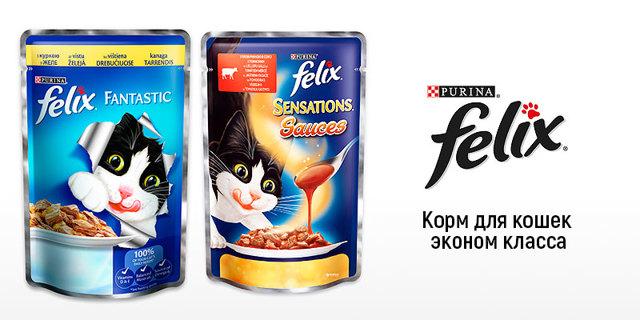 ТОП 10 влажных кормов для кошек супер премиум класса