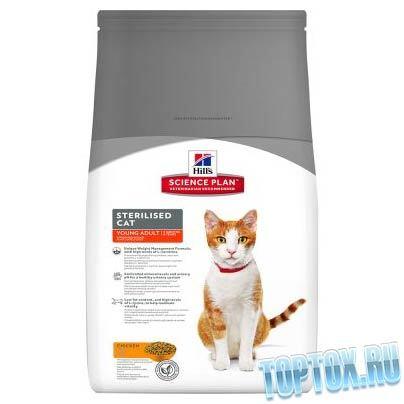 Корм для кастрированных котов - какой лучше