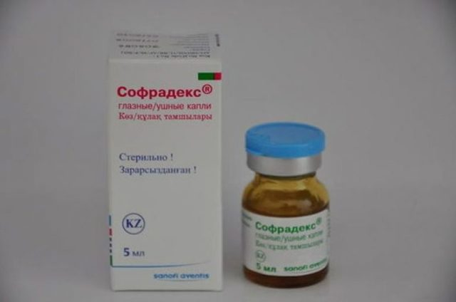 ТОП 5 противовирусных препаратов для кошек