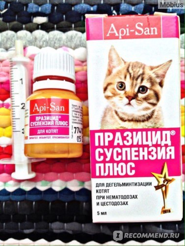 Суспензия от глистов для кошек - преимущества и недостатки
