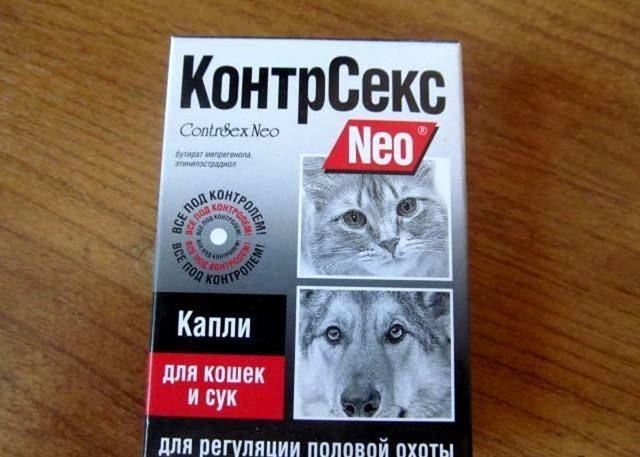 Капли для кошки от хотения кота - описание препаратов