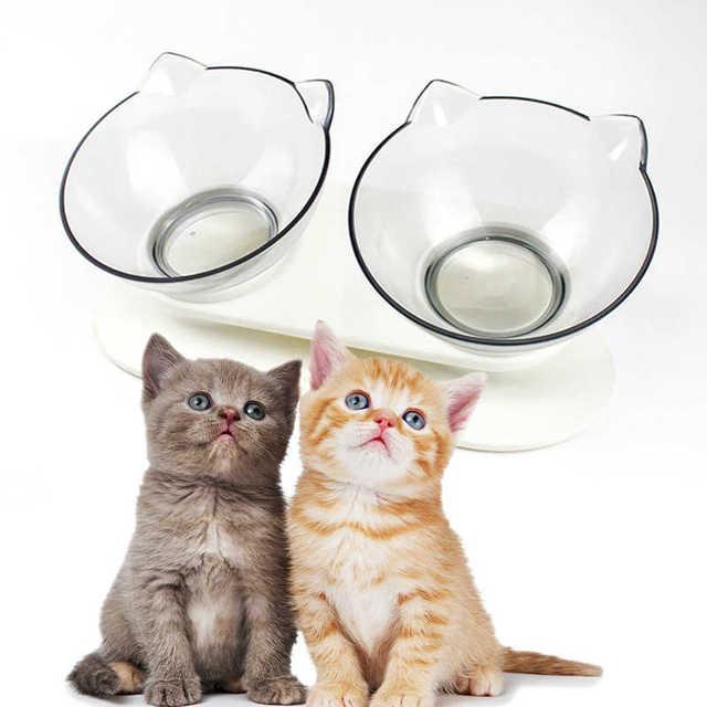 Причины почему кот не пьет воду