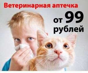 Викасол для кошек - инструкция по применению, дтзировка