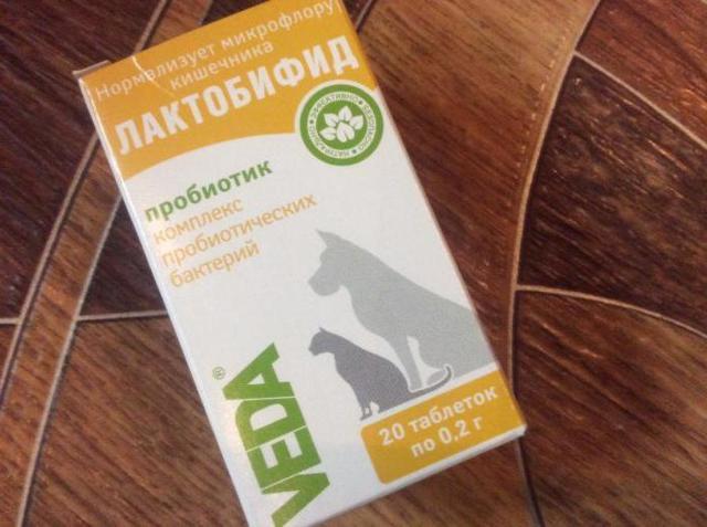 Бифитрилак для кошек - инструкция по применению препарата