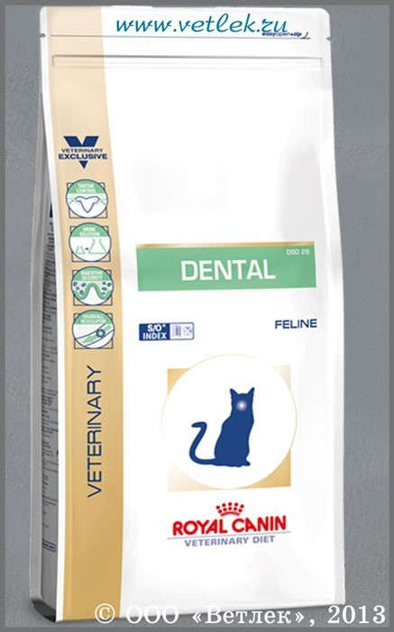 Как почистить зубы коту, нужно ли, подготовка к процедуре