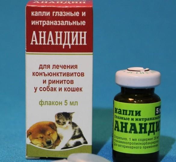 Капли от конъюнктивита для кошек