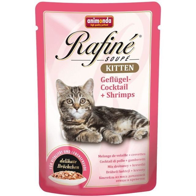 ТОП 10 кормов для котят премиум класса