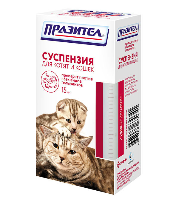 Таблетки от глистов для кошек - обзор лучшых препаратов