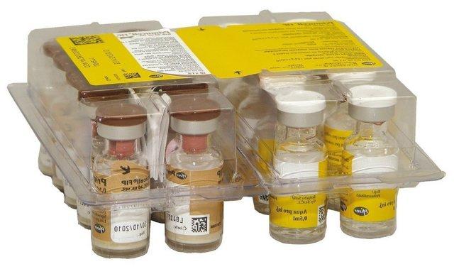 Вакцинация кошек - особенности и классификация
