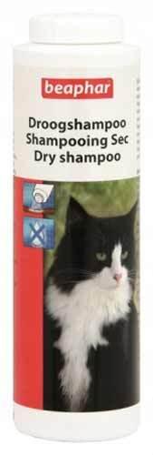 Шампунь от перхоти для кошек - какой лучше брать