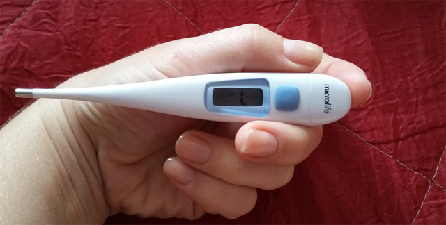 14 причин низкой температуры у кошки - симптомы и лечение
