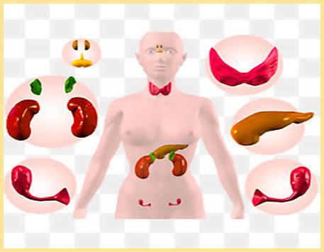 11 причин пародонтоза - симптомы и лечение