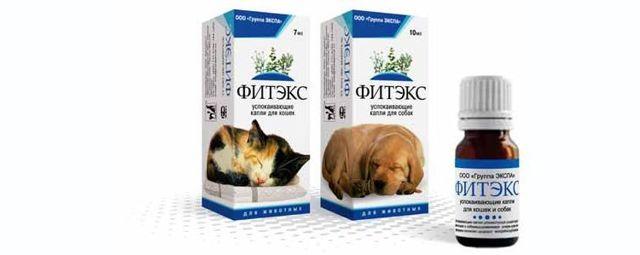 Фитекс для кошек - инструкция по применению, состав и дозировка