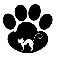8 причин почему у кота облезает хвост - симптомы, лечение и профилактика