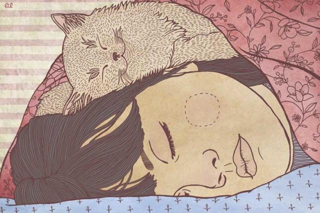 5 причин почему кошка спит у головы человека